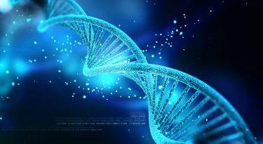 Engenharia genética e o futuro da humanidade