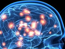 Poder da narrativa: o cérebro explica