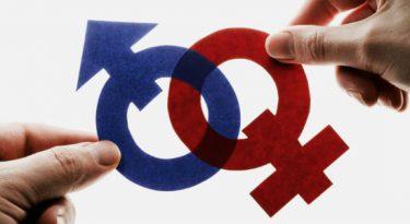 Igualdade de gênero em alguns ícones da inovação