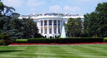 George W. Bush: o pintor é melhor do que o ex-presidente?
