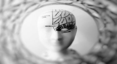 Journey to a better brain